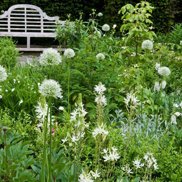 Steve Edney Head Gardener of The Salutation in Sandwich. Which was originally designed by Edward Lutyens, for the last ten years, Steve has helped to restore the garden.